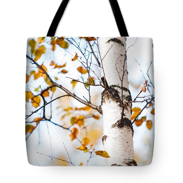 Almost Naked. Shy Girl Tote Bag by Jenny Rainbow