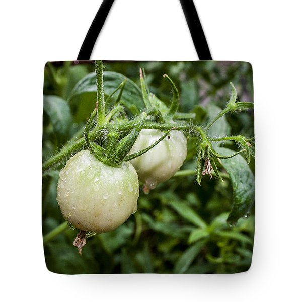 Tote Bag featuring the photograph Almost Ready by Ester  Rogers