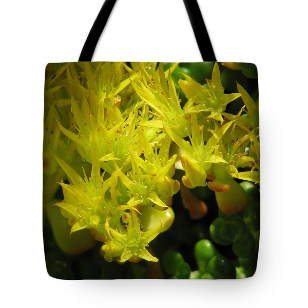 Almost Undersea Tote Bag by Rory Sagner