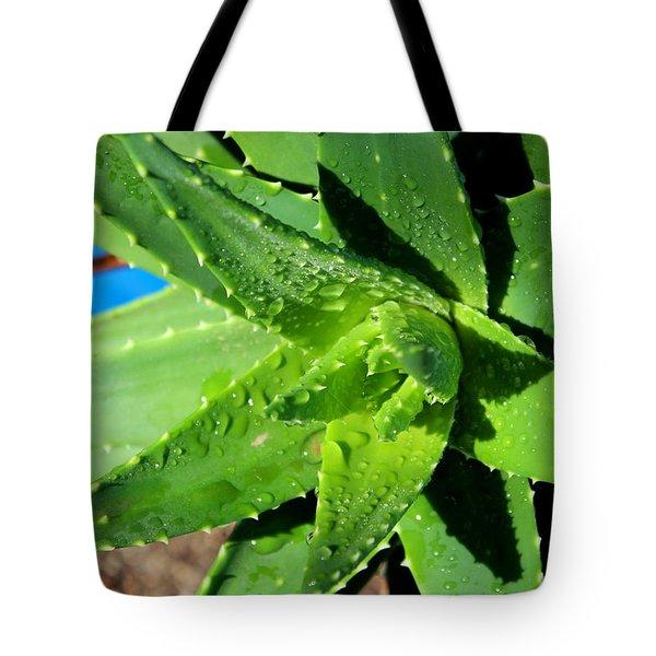 Aloe Tote Bag by M Diane Bonaparte