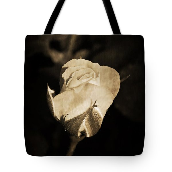 Tote Bag featuring the photograph Alone And Confident by Ester  Rogers