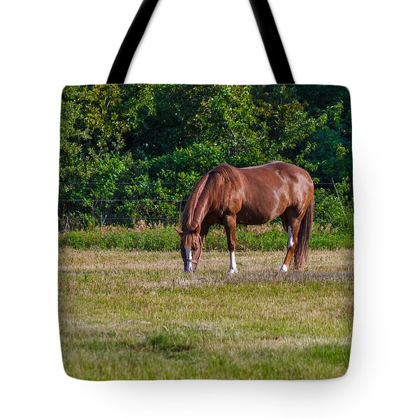 Alone In The Pasture Tote Bag by Doug Long