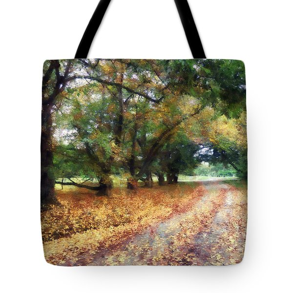 Along The Path Under The Trees Tote Bag by Susan Savad
