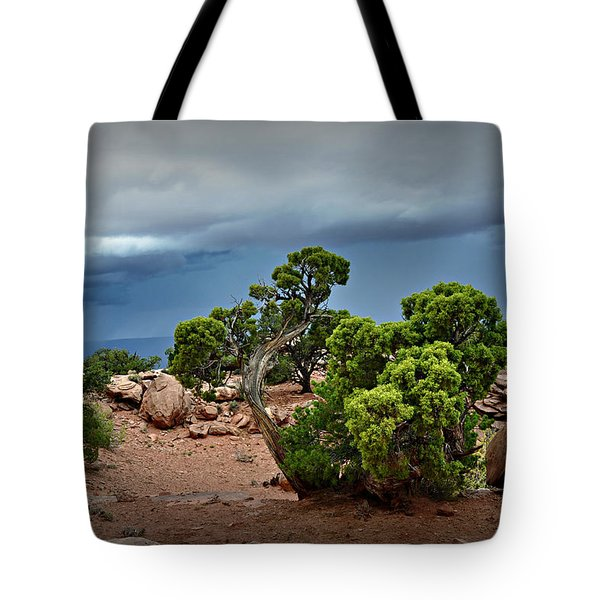 Along The Rim Tote Bag by Marty Koch