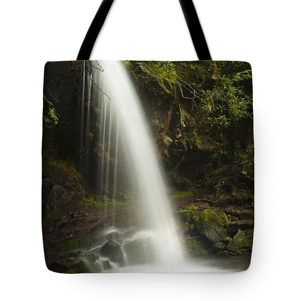 Alongside Grotto Falls Tote Bag by Andrew Soundarajan