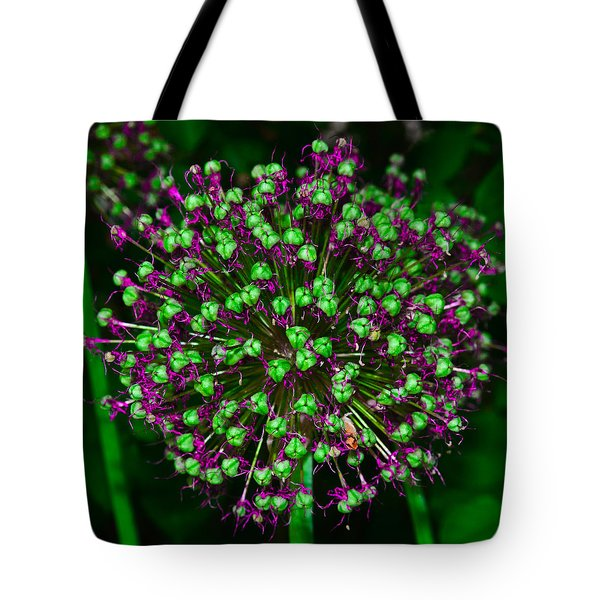 Alpine Bow Tote Bag