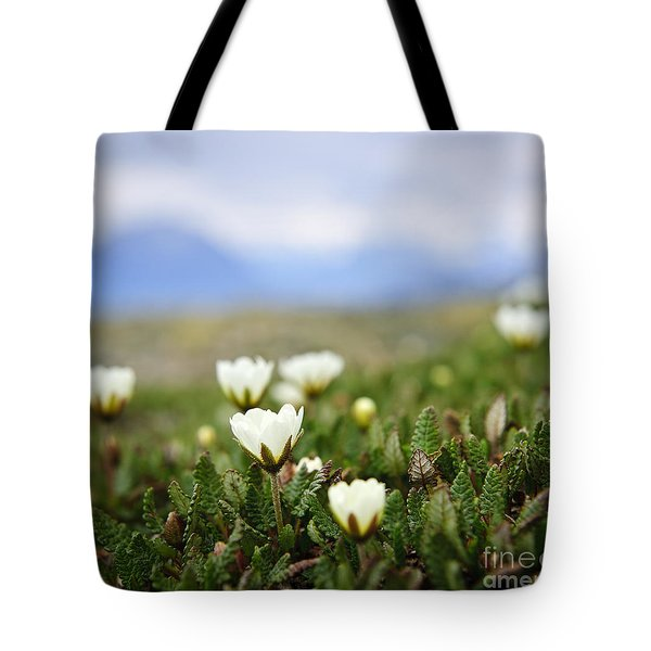 Alpine Meadow In Jasper National Park Tote Bag