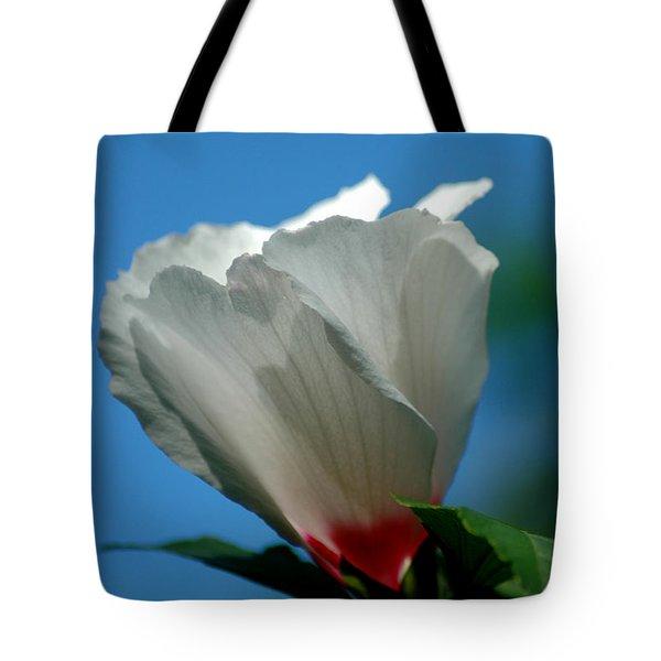 Althea Flower Tote Bag by David Weeks