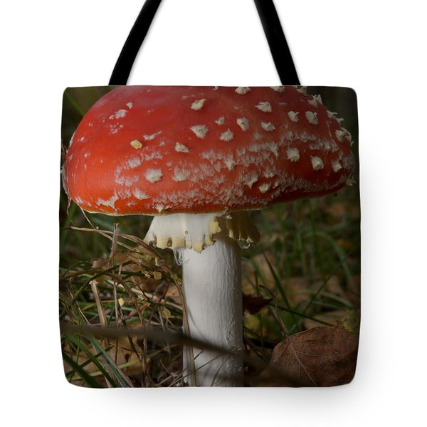 Tote Bag featuring the photograph Amanita Muscaria by Michael Goyberg