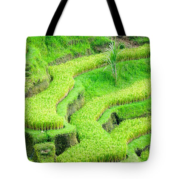 Tote Bag featuring the photograph Amazing Rice Terrace Field by Luciano Mortula