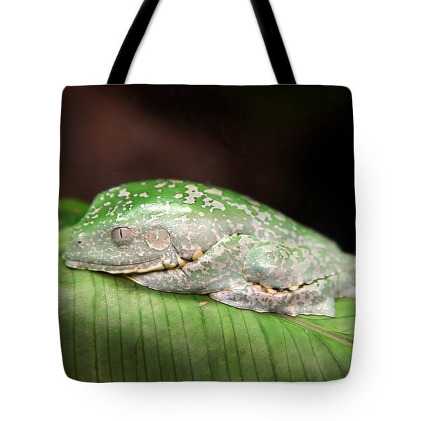 Amazon Leaf Frog Tote Bag by Brad Granger