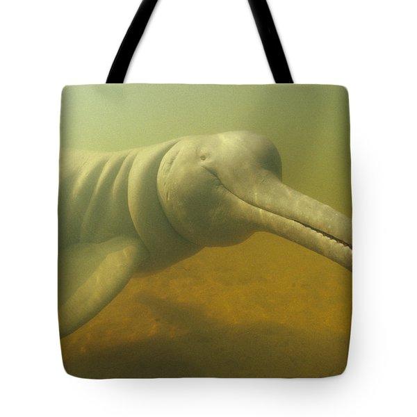 Amazon River Dolphin Portrait Brazil Tote Bag by Flip Nicklin