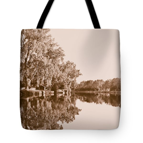 Tote Bag featuring the photograph Amber Reflection by Sara Frank