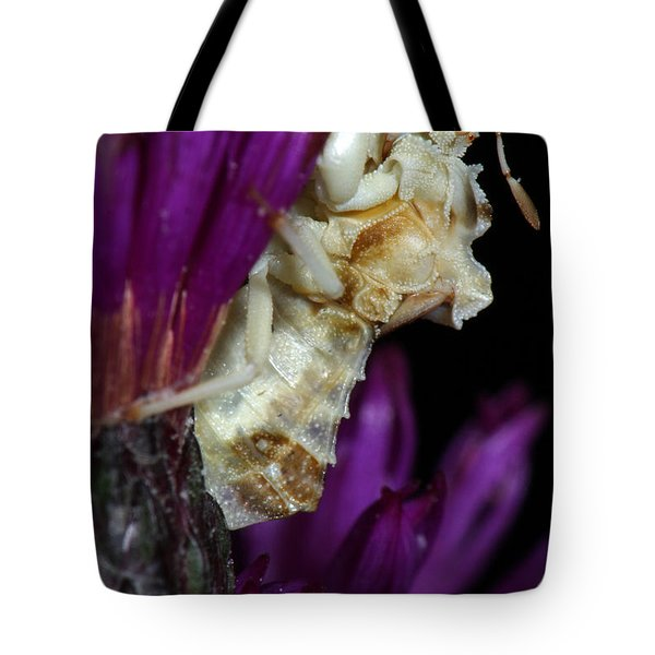 Tote Bag featuring the photograph Ambush Bug On Ironweed by Daniel Reed