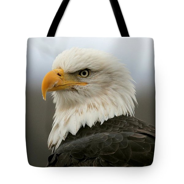 Tote Bag featuring the photograph American Bald Eagle Portrait by Myrna Bradshaw