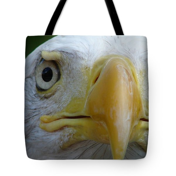 American Bald Eagle Tote Bag by Randy J Heath