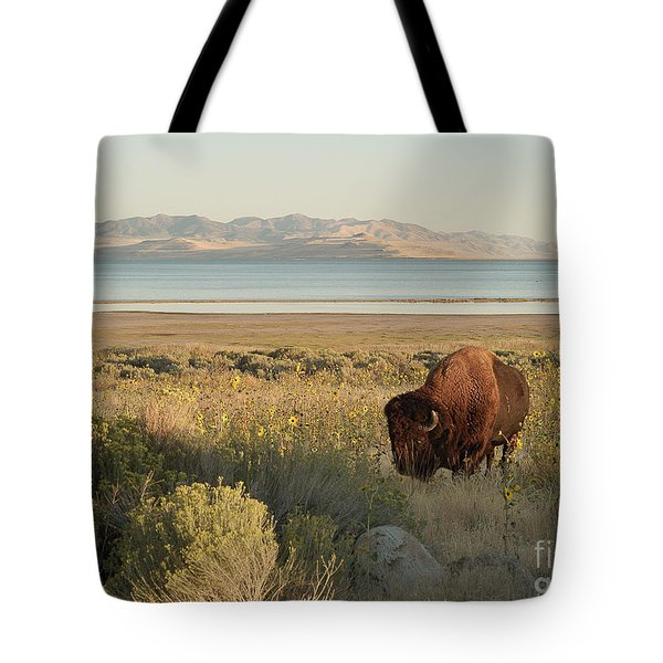 Tote Bag featuring the photograph American Bison Antelope Island Utah by Doug Herr