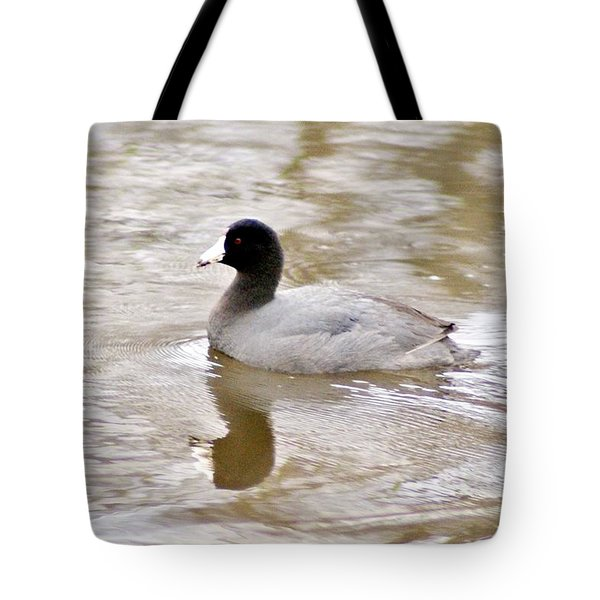 American Coot 1 Tote Bag by Joe Faherty