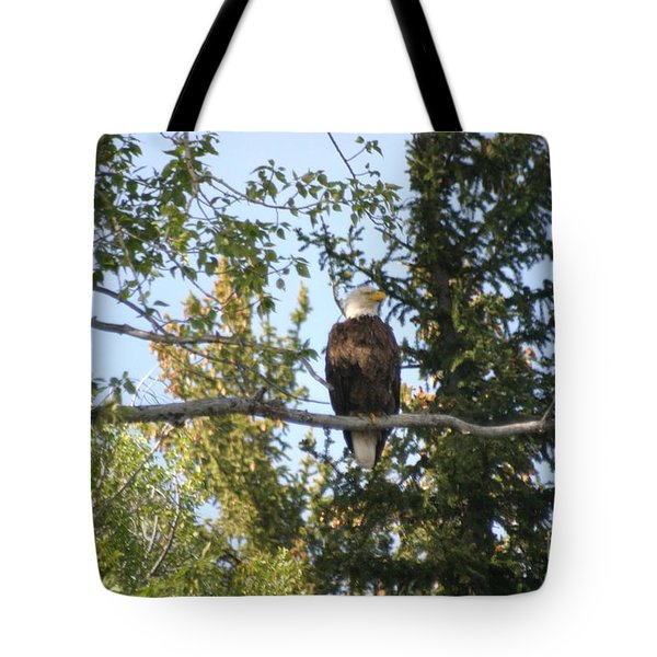 American Eagle Tote Bag by Living Color Photography Lorraine Lynch