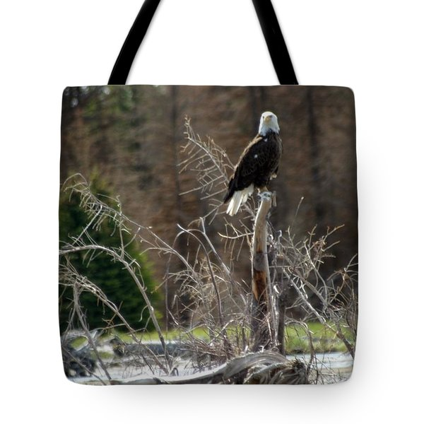 American Eagle On Snake River Tote Bag by Living Color Photography Lorraine Lynch