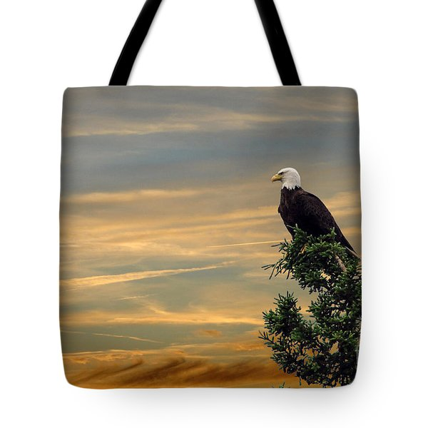 Tote Bag featuring the photograph American Eagle Sunset by Dan Friend