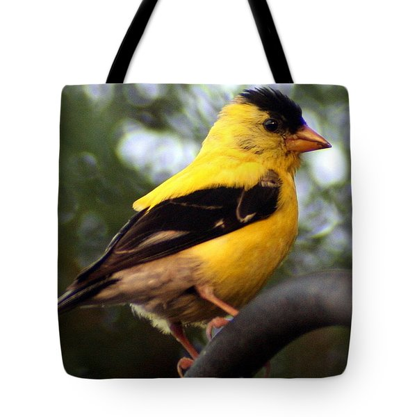 Tote Bag featuring the photograph American Goldfinch by Laurel Talabere