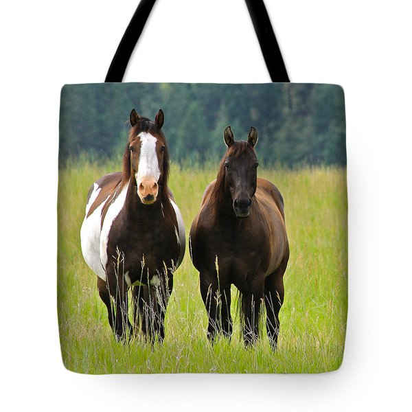 American Paint Stallion And Mare Tote Bag by Karon Melillo DeVega