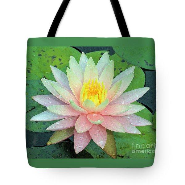 American Water Lilies Nine Tote Bag by J Jaiam