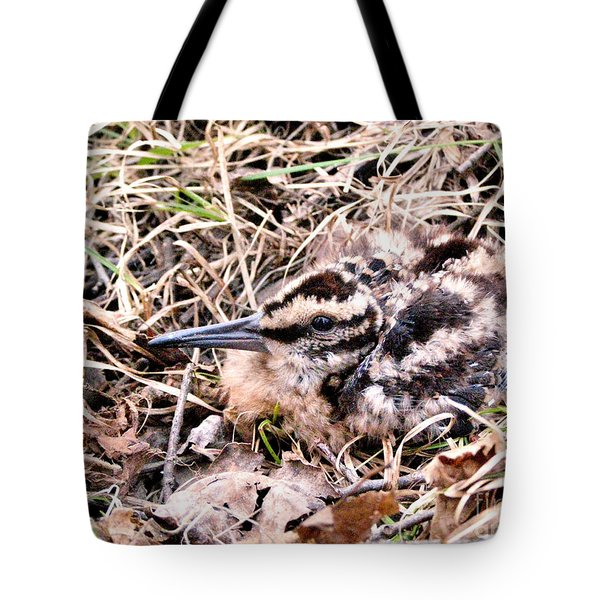 American Woodcock Chick No. 2 Tote Bag by Angie Rea