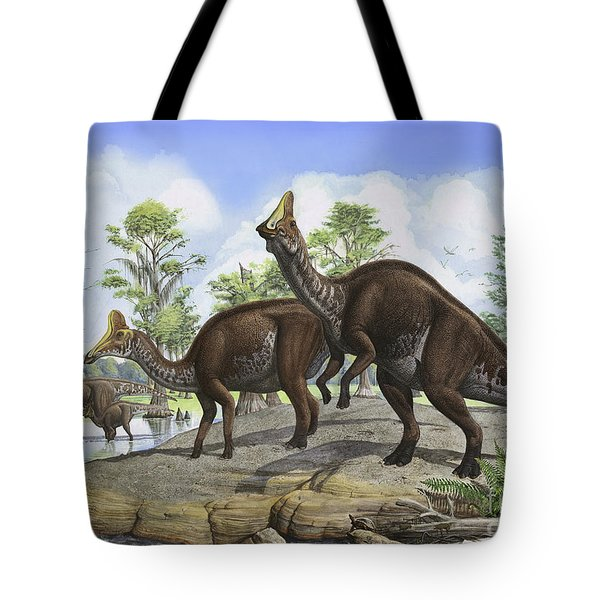 Amurosaurus Riabinini Dinosaurs Grazing Tote Bag by Sergey Krasovskiy