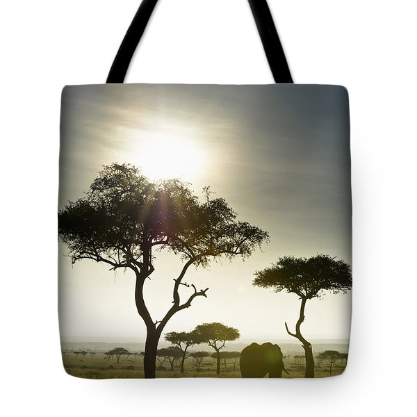 An Elephant Walks Among The Trees Kenya Tote Bag by David DuChemin
