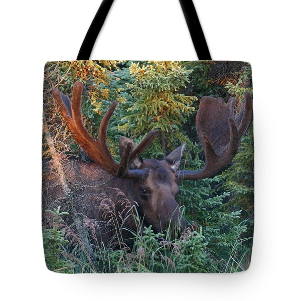 Tote Bag featuring the photograph An Eye On You by Doug Lloyd