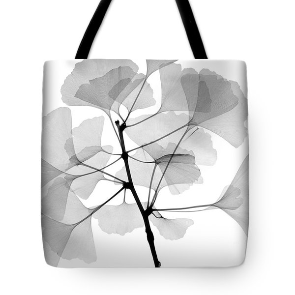 An X-ray Of Ginko Leaves Tote Bag by Ted Kinsman