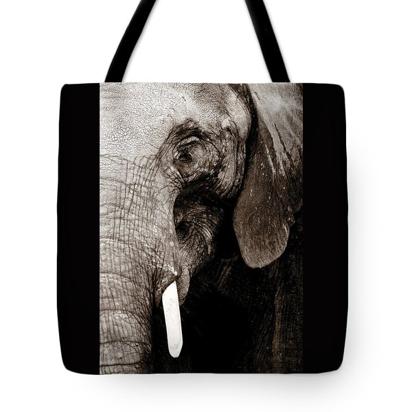 Ancient Face Tote Bag