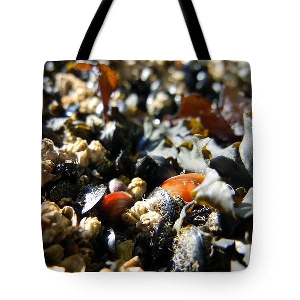 And Cockle Shells Tote Bag by KD Johnson
