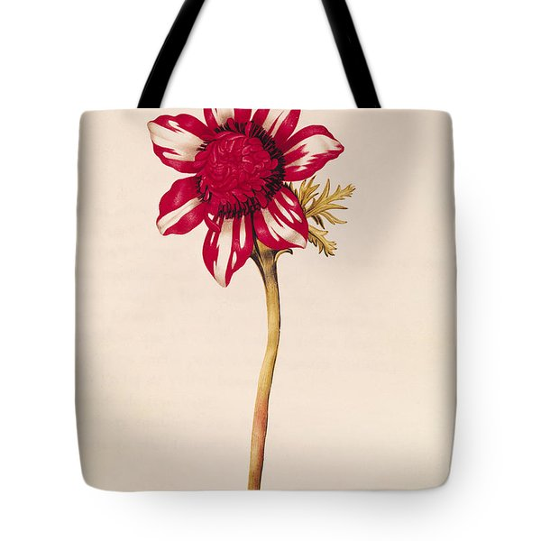 Anemone Tote Bag by Nicolas Robert