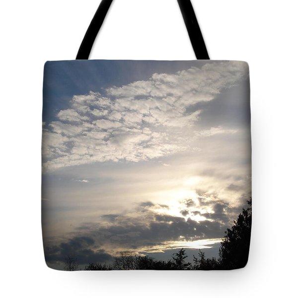 Angel's Wing Tote Bag