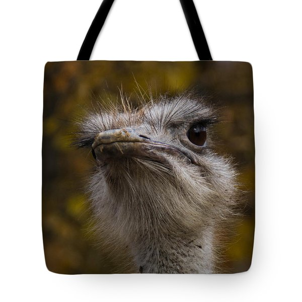 Angry Bird Tote Bag by Trish Tritz