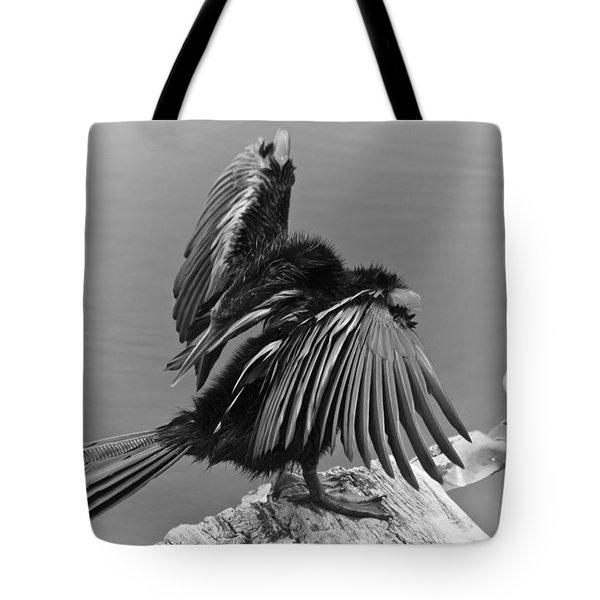 Anhinga Water Bird Tote Bag by Carolyn Marshall