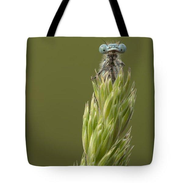 Animal Tote Bag by Andy Astbury