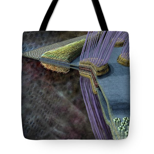 Animal Cell Junctions Tote Bag