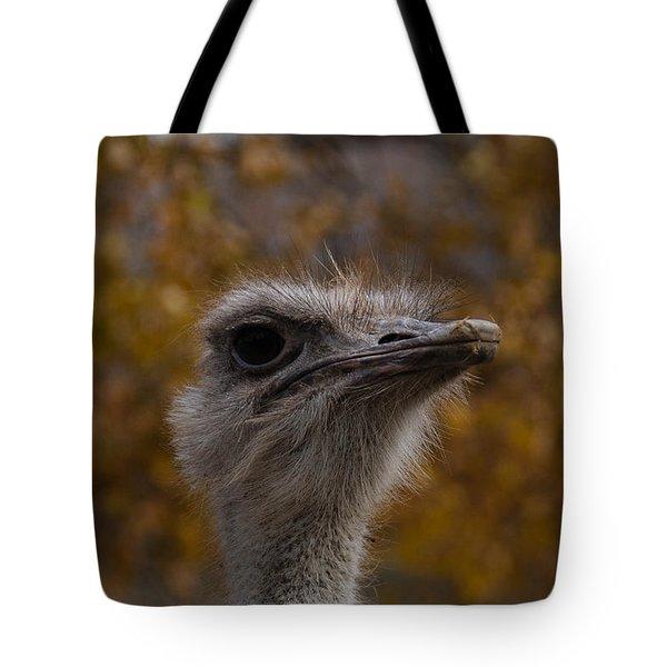 Annoyed Bird Tote Bag by Trish Tritz