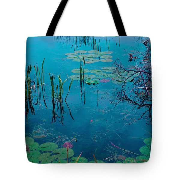 Another World Vii Tote Bag