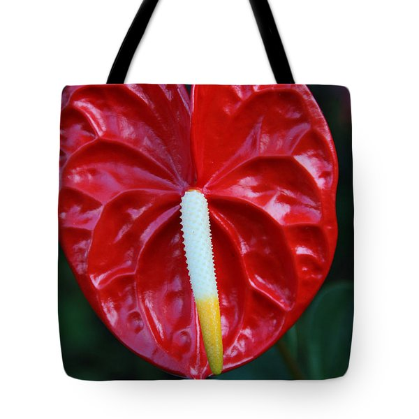 Tote Bag featuring the photograph Anthurium by Kerri Ligatich