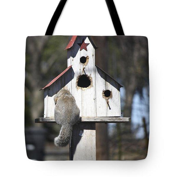 Anyone Home Tote Bag by Teresa Mucha