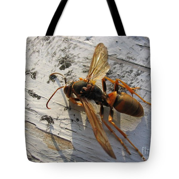 Apache Red Wasp Tote Bag by Mark Robbins
