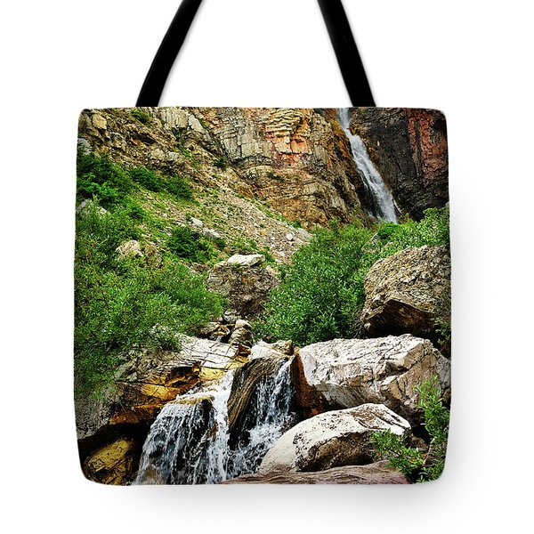 Apikuni Falls Tote Bag by Greg Norrell