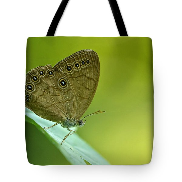 Tote Bag featuring the photograph Appalachian Brown by JD Grimes