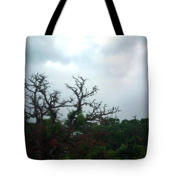 Tote Bag featuring the photograph Approaching Storm Viewed Through My Rain Streaked Window by Lon Casler Bixby