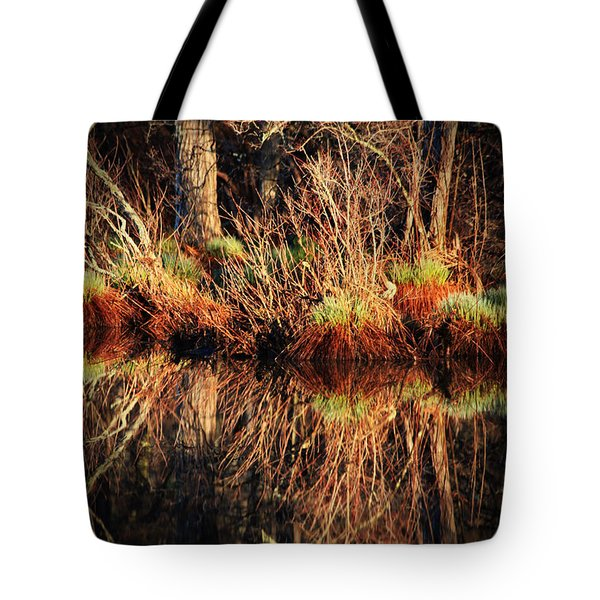 April's Pond Tote Bag by Karol Livote